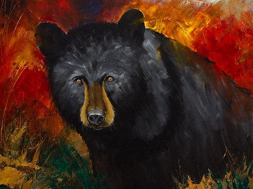 Smokey Mountain Black Bear