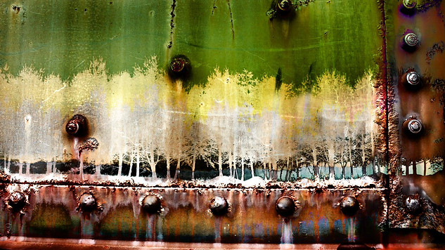 Industrial Forest Abstract - Gray Artus
