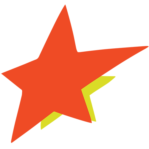 MIP_AR2020_web_ableism_star-07.png