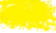 MIP_FOI2020_yellowBkgrnd-02-01.png