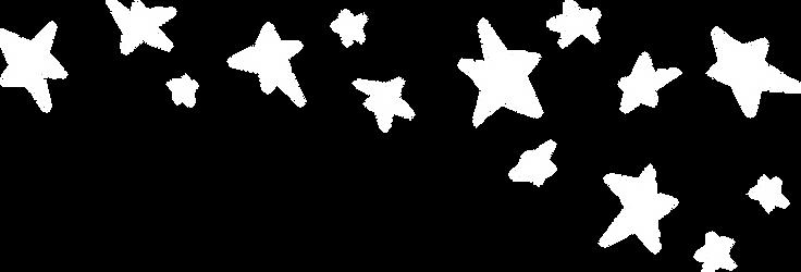 MIP_AR2020_web_stars.png