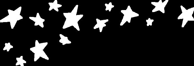 MIP_AR2020_web_stars_edited.png