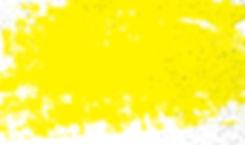 MIP_FOI2020_yellowBkgrnd-01_edited.jpg
