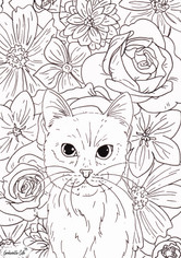 flowers and cat final.jpg