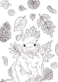 Free autumn colouring page: squirral free downoad