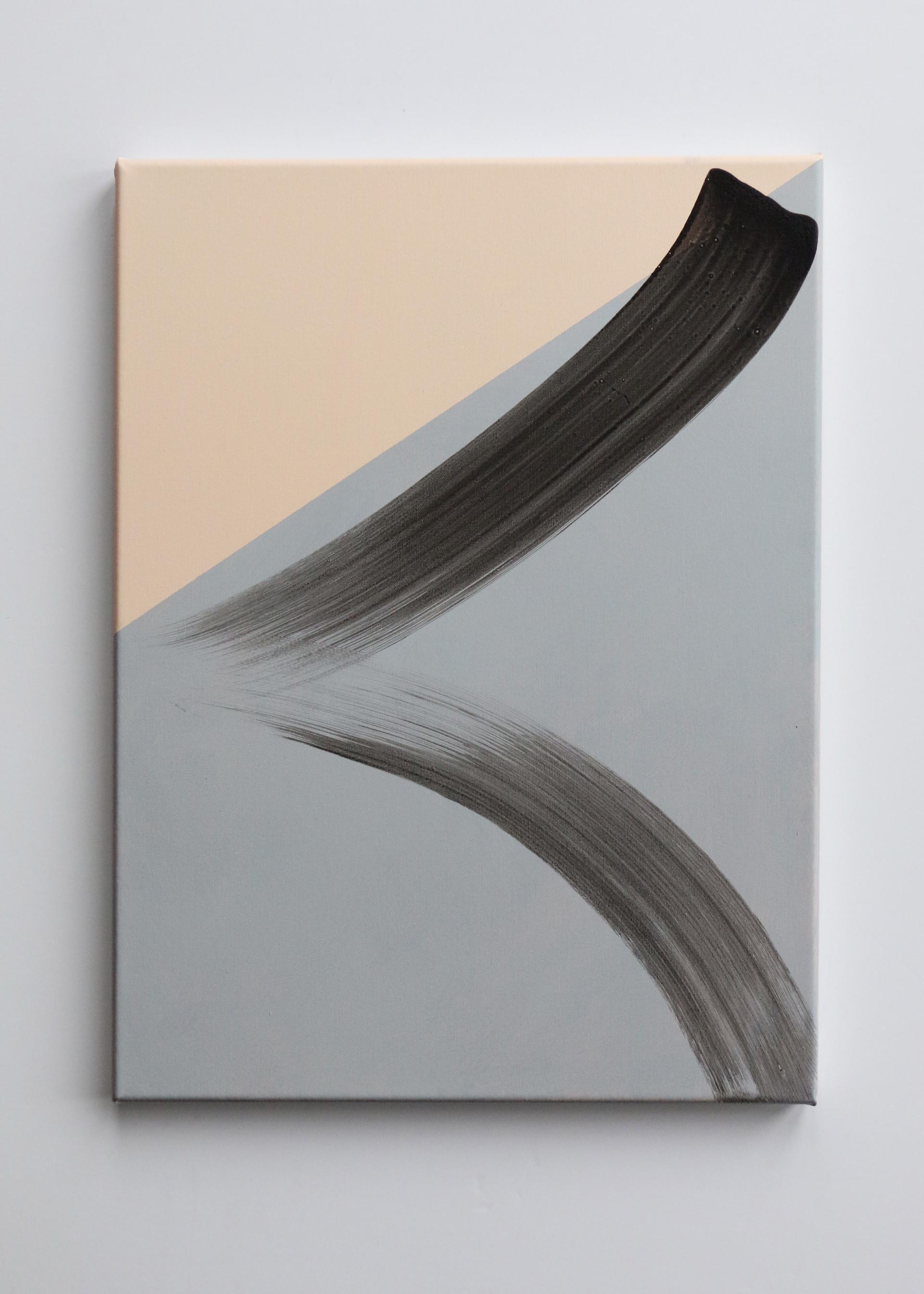 Chasing Light, acrylic on canvas, 40 x 30cm