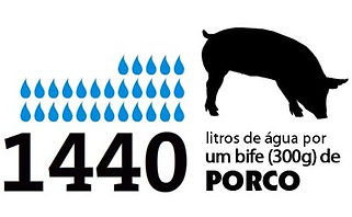 DEVASTAÇÃO AMBIENTAL CAUSADA PELO CONSUMO DE PRODUTOS DE ORIGEM ANIMAL