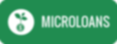 Microloans.png