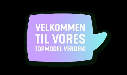 topmodel_start_dk.png