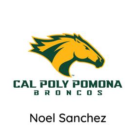 Noel Sanchez.png