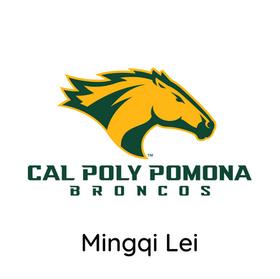 Mingqi Lei.png