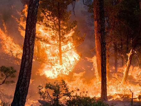 Fire - August 30, 2020