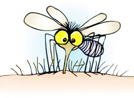 Invention of summer: Mosquitoes - July 19, 2020