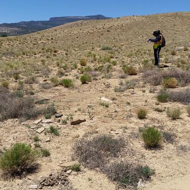 Brandi recording a site.