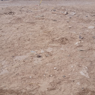 Anasazi site impacted by an old powerline.