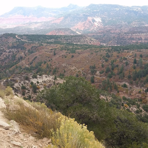 View of the Chuska Mountains.