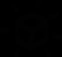 agelab_ico_validierung.png