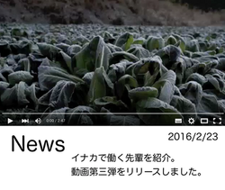 阿久津News