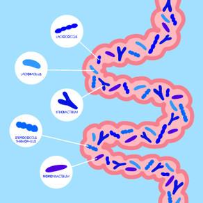 カスピ海ほど広いココロと免疫