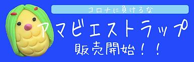 スクリーンショット 2020-08-13 11.33.54.png