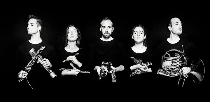Quinteto Enara ©Michal-Novak.jpg