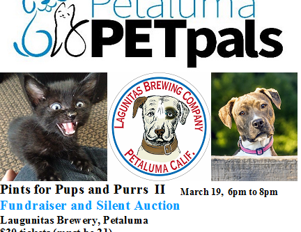 Pints for Pups and Purrs - II