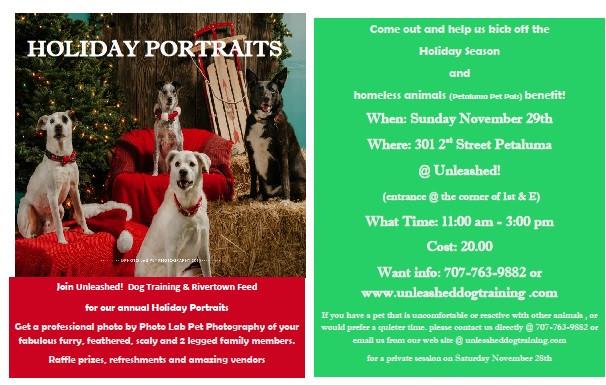 Howliday Portraits Benefiting PET Pals!