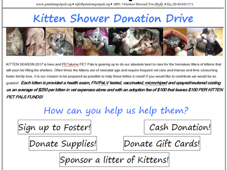 Kitten Shower Donation Drive