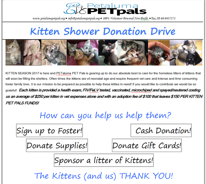 Kitten Shower Donation Drive