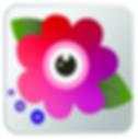 Screen Shot 2020-01-16 at 8.50.49 AM.png