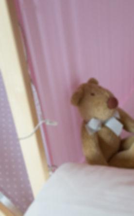 Teddy detail.jpg