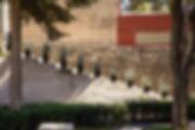 cav1.jpg