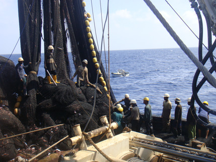 Labor onboard in the Tuna Industry and ILO fishing convention C188 - A serious matter