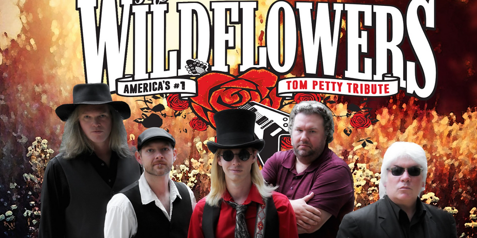 The Wildflowers (Petty Tribute) @ NMB Park & Sports Complex