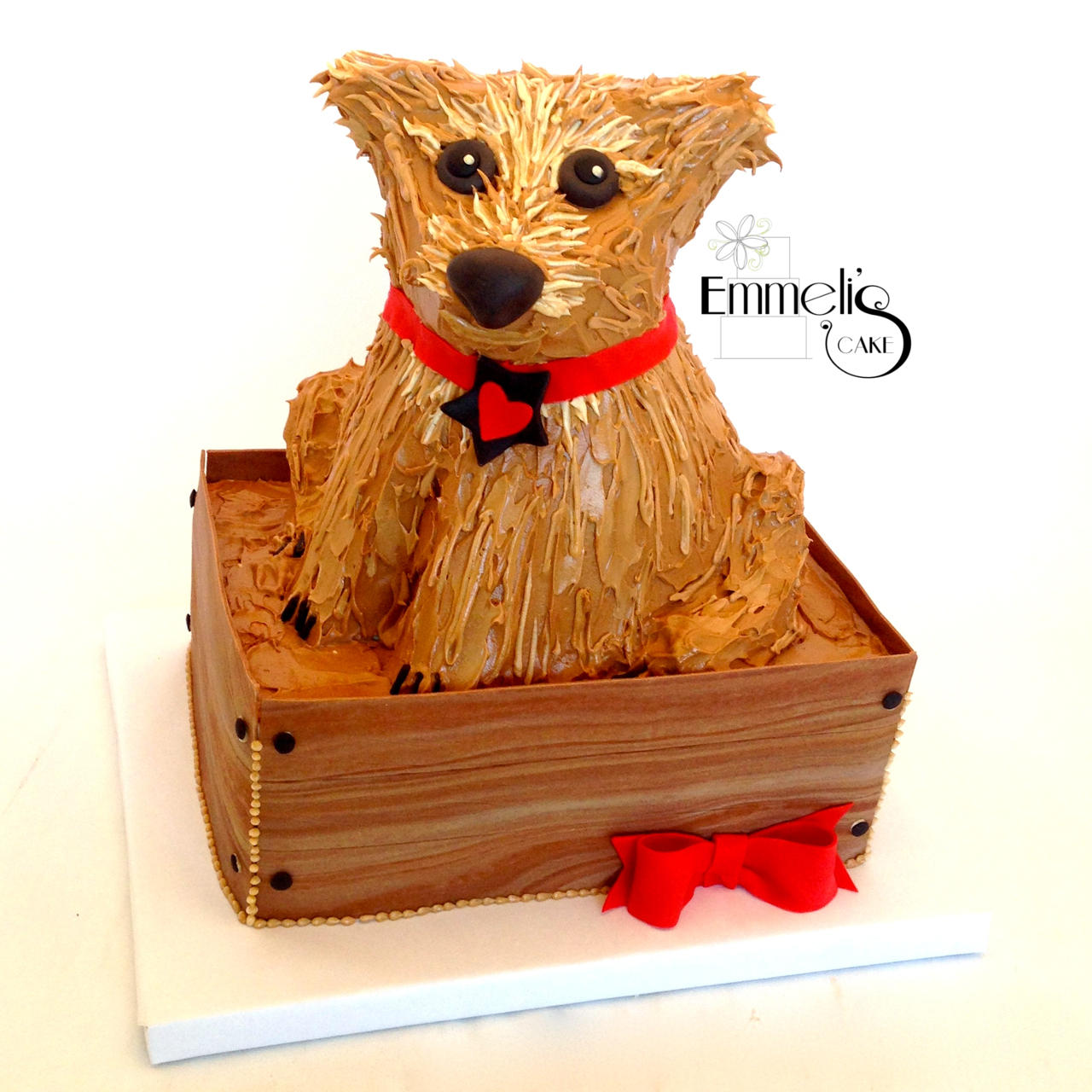 Terrier in a Wooden Box