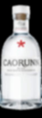 coarunn gin.png