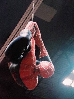 Spidey hanging out.