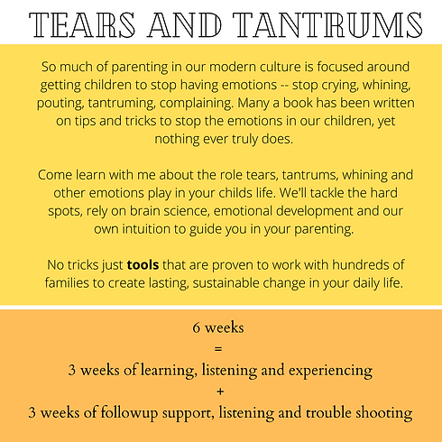 Tears and Tantrums Class.png