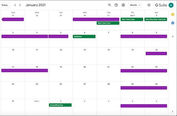 GRL_JAN_Calendar_Bookings_2021.jpg