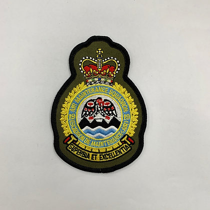 19 AMS heraldic patch