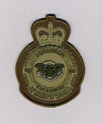 440 Squadron Heraldic Crest