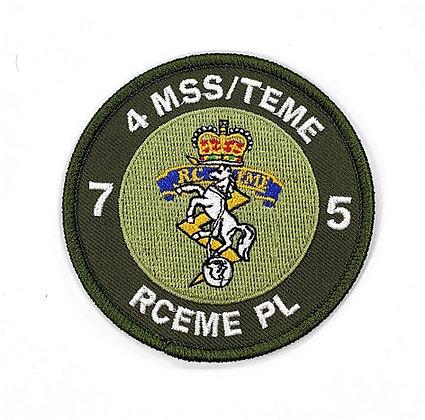 4MSS/TEME