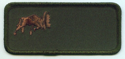419 Squadron Name Patch