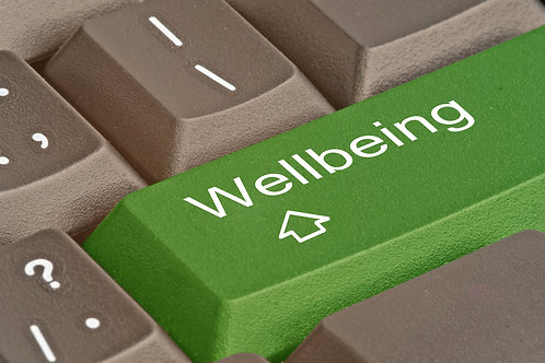 The Wellbeing Builder