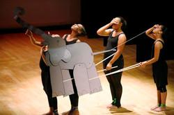 aileycamp elephant