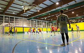 Bild_Handballhalle.jpg
