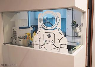 Customised astronaut decal