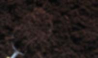 Screen Shot 2019-01-03 at 9.04.54 PM.png
