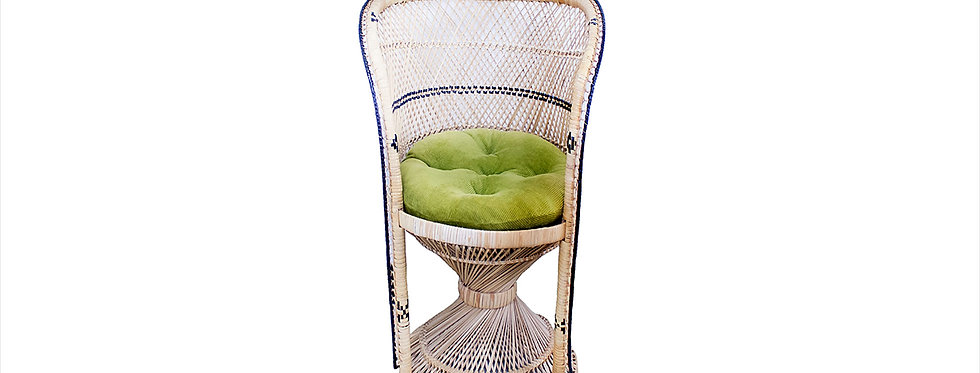 Baja Barrel Chair