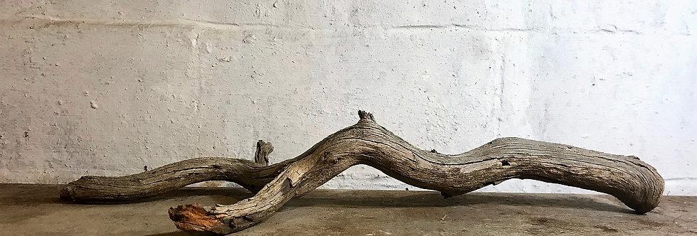 Grow Branch